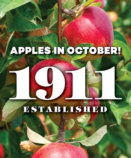 Apples in October